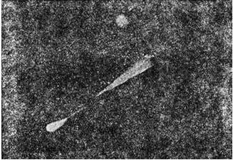 «Сброс» кометой Галлея 6 января 1986 г. частей разрушившейся твердой оболочки