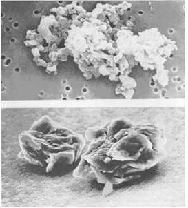 Кометная пыль: крошечные внеземные частицы, собранные на большой высоте самолетом NASA